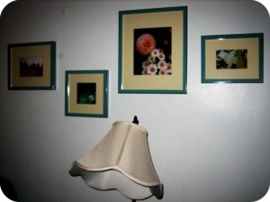 Pottery Barn Frames